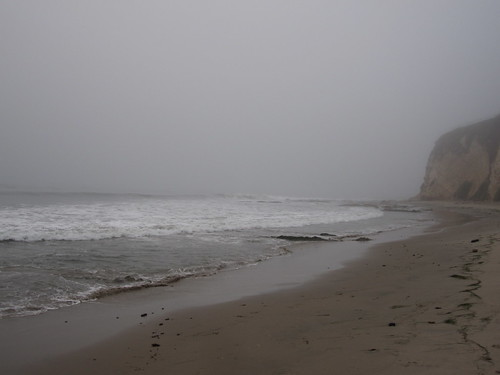 foggy today