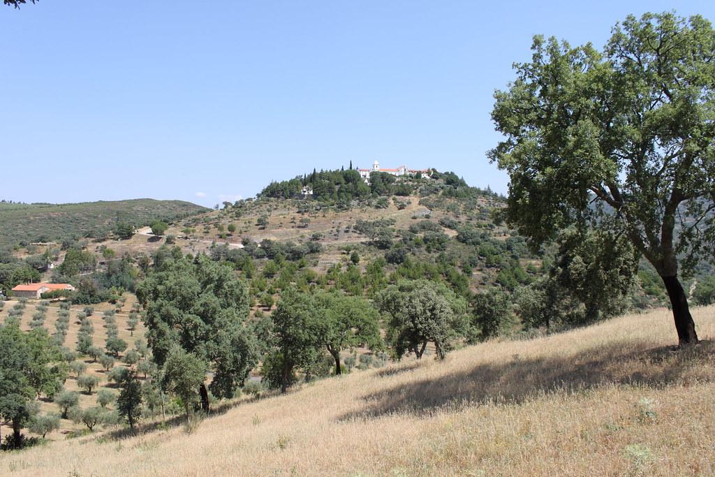 Balsamão
