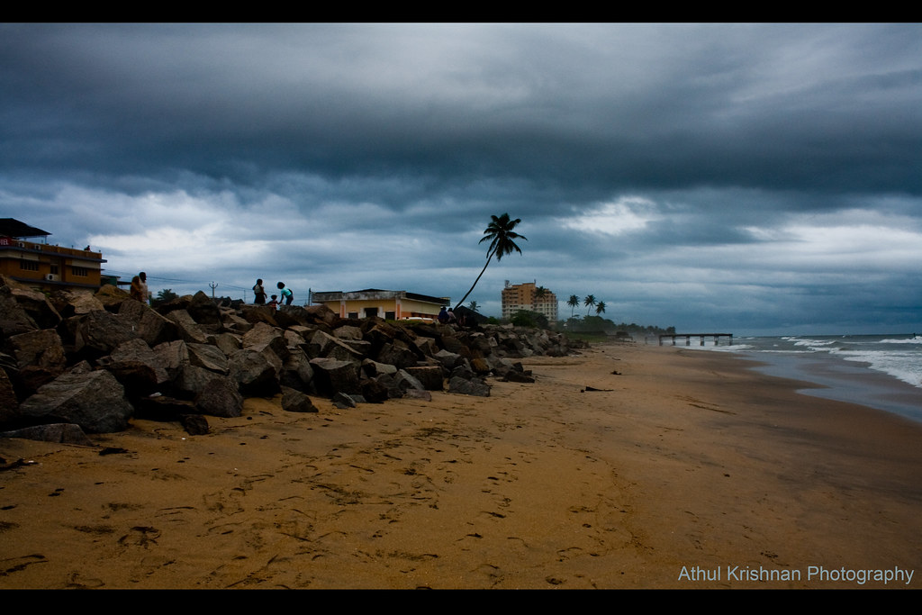 The World's Best Photos of coconut and malayalam - Flickr