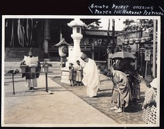 Shinto Priest (A.Davey) Tags: japan  prayers chochin harvestfestival inarijinja shintopriest shide  oldjapan kannushi     prewarjapan  vintagephotofromjapan shintopriestofferingprayersforharvestfestival