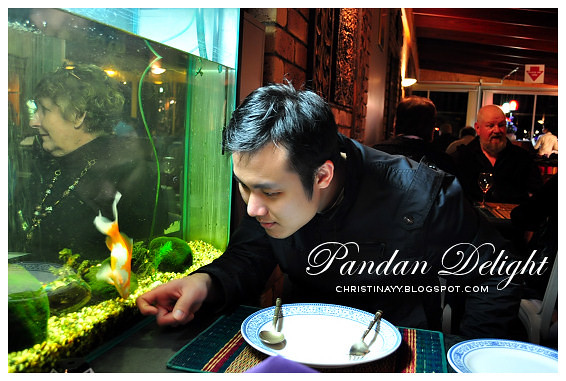 Pandan Delight: Playing with Gold Fish