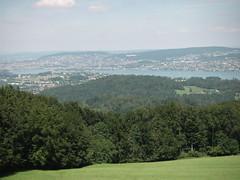 unteres Zürichseebecken