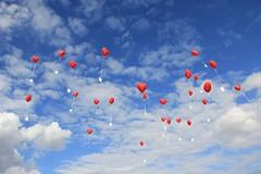 wedding wishes (**MIKA**) Tags: blue wedding cards heart ballon balloon himmel jena card blau hochzeit greeting herz postkarten luftballon imaginata mywinners platinumphoto herzballon hochzeitshimmel