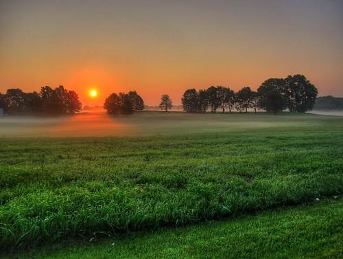[フリー画像] 自然・風景, 草原, 朝日・朝焼け・日の出, 霧・霞, 201008102300