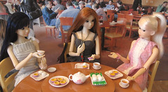 Dinner at a Chinese restaurant