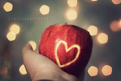 Cause You're the Apple To My Pie (Sarah Ching) Tags: lighting christmas blue light summer two food macro texture love apple set fruit canon pie hearts lights carved stem focus perfect hand yum heart you bokeh can be hold applepie engrave grasp trisarahhtops perfecttwo