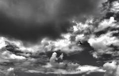 Petit monomoteur en N&B (Fnkz) Tags: plane noiretblanc nuage avion monomoteur