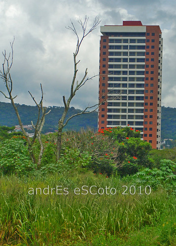 Torre Pedregal 01