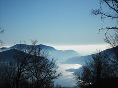 A summerly Winter (jemamuse) Tags: trees winter panorama lake snow alps art nature water beauty fog skyline forest switzerland nebel branches foggy sunny villages glacier population lugano current overview mountai flawless neveafebbraio