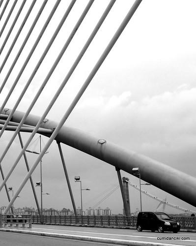 Putrajaya bridges6