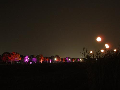 平城宮跡夏季フェア「光と灯りのフェア」-26