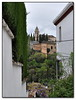 Alhambra from the Albaicin (Mike G. K.) Tags: trees plants white castle spain path andalucia alhambra granada walls wisteria albaicin mikegk:gettyimages=submitted