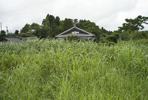 JC0805.064 宮崎県西都市 M8.2sn35a#