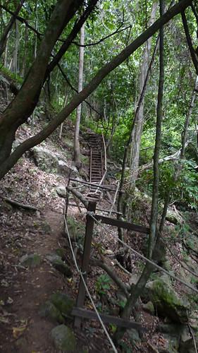 Koh Samui Canopy Adventures サムイ島キャノピーアドベンチャー1