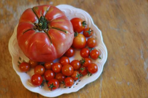 Todays Tomato Harvest