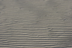 Rippling sand