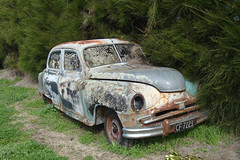 Old Vanguard (Home Land & Sea) Tags: old newzealand car rusty nz weathered pointshoot sonycybershot vanguard hawkesbay phaseii teawanga dsch3 standardmotorcompany homelandsea britishcarmuseum