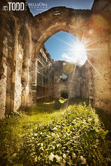 Ruined Church of San Guadenzio (Todd Keith) Tags: summer italy mountain plant church overgrown beauty vertical stone architecture creativity switzerland construction scaffolding arch cathedral grunge religion praying dirty spooky monastery lensflare spirituality istock catholicism vignette hdr restoring oldfashioned ruined tranquilscene naturalarch gothicstyle colorimage famousplace beautyinnature oldruin grassarea italianculture symbolsofpeace europeanalps texturedeffect circa12thcentury