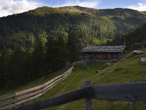 P8038981 in den Alpen