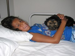 Ethan and Wintson (DenaVB) Tags: pets dogs kids puppy ethan winston yorkiepoo
