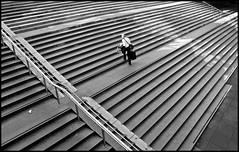 "stairs ""2010"" (Ulf Bodin) Tags: woman stairs contrast geometry diagonal uppsala heavy kontrast trappa kvinna fotosöndag"