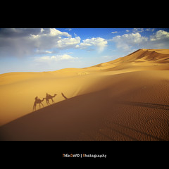 Walk Away (Feo David) Tags: blue sunset shadow sky sahara clouds canon eos sand shadows desert walk dunes south sable ombre bleu ciel morocco maroc 5d nuages sud ombres merzouga dromadaire mywinners platinumphoto