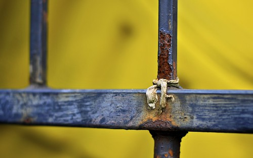 Fence And Yellow
