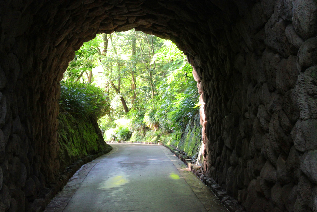 Hydrangeas - Exploring Hase, Kamakura part2 (14)
