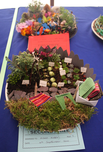 Miniature garden on a plate