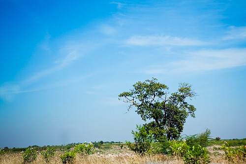 Bangalore to Hyderabad - Chitra Aiyer Photography