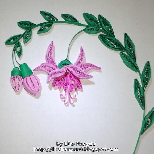Fuchsia Hybrida v2