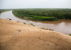View over Omo river from the top of the bank, Omo valley, Korcho, Ethiopia (Eric Lafforgue) Tags: abyssinia adventure africa african amazing animals bank beautifullandscape colourpicture day developingcountry eastafrica ethiopia ethiopia0617332 ethnic horizontal hornofafrica indigenousculture kara karo kolcho korcho landscape loweromovalley nopeople omoriver omovalley river sheeps southernethiopia tranquilscene traveldestinations trees tribal water