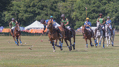 Away to the goal (DaveMac photography) Tags: polo newforest england newforestpoloclub sunday sunnyafternoon ponies equestrian equine mallets events pologame outdoors