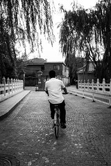 Come with me (Go-tea 郭天) Tags: pékin beijingshi chine cn beijing hutong gulou old tradition traditional building construction historical historic history trees bridge man bicycle bike alone lonely transportation tmovement ride ridding fast speed rider back backside middle pavement shirt street urban city outside outdoor people bw bnw black white blackwhite blackandwhite monochrome naturallight natural light asia asian china chinese canon eos 100d 24mm prime candid cross crossing