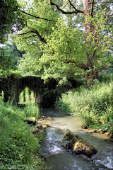Hoyoux (Manurva) Tags: bridge tree nature belgium enchanted rivulet condroz hoyoux deepcondroz