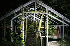 Lost place (roomman) Tags: old trees house hot tree green history abandoned nature metal mystery night germany garden way lost grid evening interesting hessen geocaching market frankfurt empty secret main nursery places conservatory adventure hidden story hide greenhouse area unknown geocache cache left geo rhein taunus destroyed abandonment gc hothouse abandonned 2010 destroy mtk hesse gärtnerei xy marketgarden rheinmain lostplaces lostplace maintaunuskreis badsoden nightcache monotard ungelöst geocacheing vordertaunus gc200 xyungelöst gc200xy 200xy