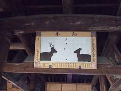 黒澤明展 千畳閣 画像 10