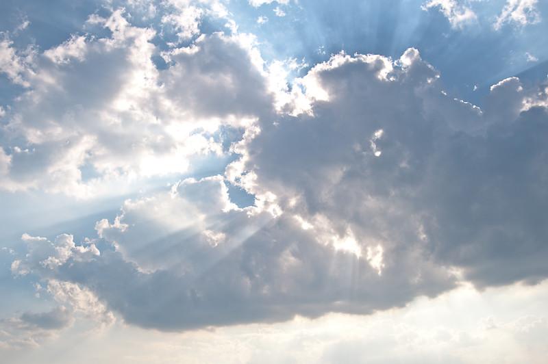 Day 266- Sun Rays