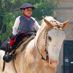 Niez feliz (Eduardo Amorim) Tags: boy horses horse southamerica argentina criollo caballo cheval caballos cavalos pferde cavalli cavallo cavalo gauchos pferd menino pampa junge hest garon hevonen chevaux gaucho ragazzo guri  amricadosul hst gacho  campero amriquedusud provinciadebuenosaires  gachos  sudamrica sanantoniodeareco suramrica pi amricadelsur  areco sdamerika crioulo caballoscriollos criollos  pampaargentina camperos americadelsud platinumphoto  crioulos cavalocrioulo americameridionale holidaysvacanzeurlaub caballocriollo piazito campeiros diamondclassphotographer ysplix campeiro eduardoamorim cavaloscrioulos saariysqualitypictures iayayam yamaiay pampaargentino