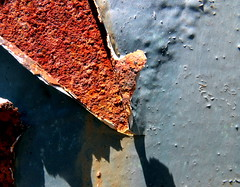 peelings (dmixo6) Tags: summer rot nature rust peeling decay rusty age muskoka oxidize 2010 dmixo6