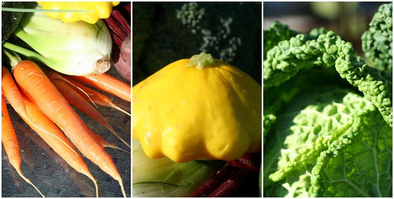 CSA Veggies Week 2