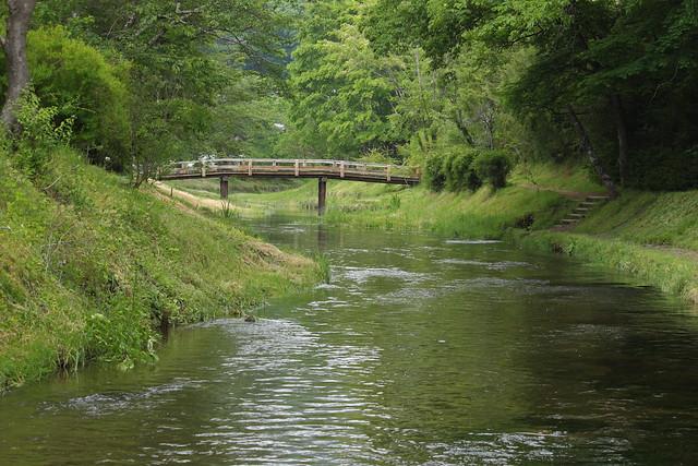 Oshino River