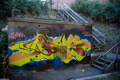Swamp Foot (Scotty Cash) Tags: graffiti 2010 nwk sueme 9lives