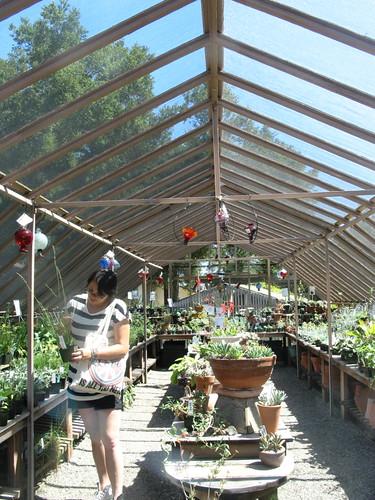 Botanic Garden's Nursery