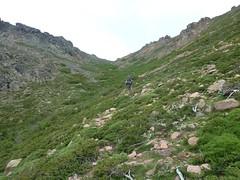 Descente de la Haute Lonca : Arnaud dans le vallon de Bocca di u Saltu