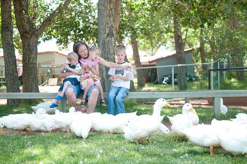 Us feeding the ducks