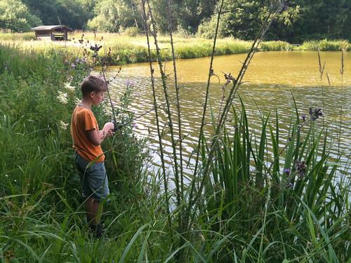 Fishing in Snogeholm