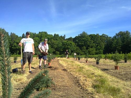 Tree planting #N97minitour
