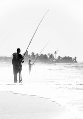 Sea fishing (sashalmeida) Tags: fish beach fishing seafishing