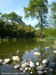 à Saint-Cyprien (nicefor) Tags: france jardin 66 catalogne saintcyprien pyreneesorientales